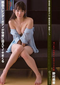 Nomura Moeka - Excellent Pussy