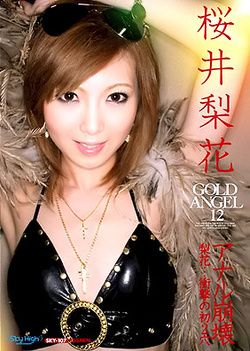 Gold Angel Vol 12