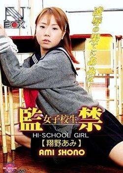 AV Box Vol. 28: Hi-School Girl